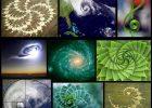 free-spirit spiral